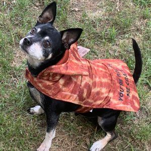 BACON Dog Costume